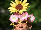 Galerie flower-power.jpg anzeigen.